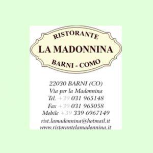 logo madonnina